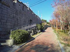 서울 성곽길. 동대문-낙산-혜화문 1