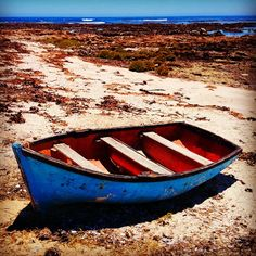 Situated within what was once a restricted diamond mining area lies the aptly titled, Diamond Coast. Now jointly run by De Beers Coast of… Rocks And Minerals, Hiking Trails, South Africa, Paths, Most Beautiful, National Parks, Places To Visit, Coast, Explore