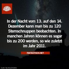29 wissenswerte Fakten - - New Ideas Something Interesting, Interesting Facts, Lol So True, Statements, Funny Facts, Good To Know, Astrology, Texts, Knowledge