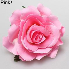 Shop hair pin Women Sweet Big Rose Blossom Flower Wedding Bridal Hair Clip Hairpin Brooch Pin - Pink - Find the newest styles of Hair Styling Pins with Affordable Prices. Pink Rose Flower, Blossom Flower, Peony Flower, Pin Up, Rosa Rose, Wedding Hair Clips, Flower Hair Accessories, Beach Accessories, Cloth Flowers