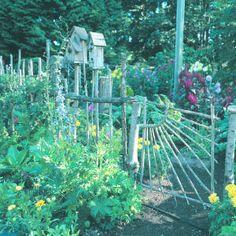 Fences frame the garden