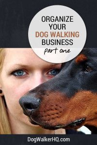 Get Organized for Your Dog Walking Business Now - Part 1