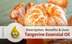 Tangerine Essential Oil. Description, Benefits & Uses  Tangerines have a rich history of use in Chinese culture as well as Chinese medicine and the essential oil is used today in aromatherapy to treat a variety of physical and mental conditions
