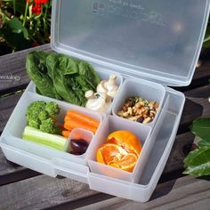 Great Snacks for Outdoorsy Activities from Team Bentology