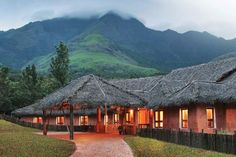 Dreamholidays Kerala are the best tour operator in India offering Kerala tour packages and information about Kerala tourism, holiday packages, honeymoon tours and tourist places. Tourist Places, Places To Travel, Places To Go, Kerala Travel, India Travel, Kerala Tourism, Kerala India, South India, India India