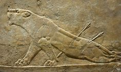 Lioness Devouring a Boy, Phoenician Ivory Panel ... |Wounded Lioness Mesopotamia Ancient Art