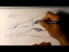 Drawing a Dragon Skull