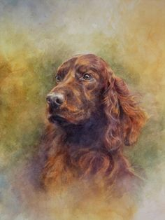 Never without an Irish Setter, I think you can tell how much my father loves them from his painting. Irish Eyes by Jeremy Mallard. Chien Springer, Pet Dogs, Dogs And Puppies, Doggies, Mundo Animal, Art Archive, Watercolor Animals, Dogs Of The World, Wildlife Art
