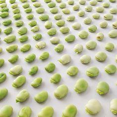 Fava Beans by JuliesKitchen l #foodcollage