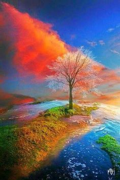 Diamond painting kits at discount prices. Huge selection of amazing diamond painting and outstanding customer service. Landscape Pictures, Landscape Paintings, Planet Painting, Tree Photography, Cross Paintings, Paint By Number, Autumn Trees, Amazing Nature, Beautiful Landscapes