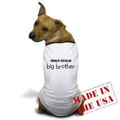 Big brother shirt for the dog!