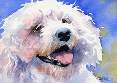 BICHON FRISE Dog Art Print Signed by Artist DJ by k9artgallery