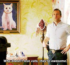 Hawaii Five-O. I love Steve's explanation of why Cats are awesome. =)