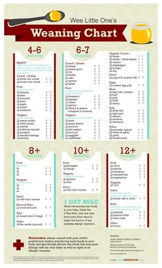 Age guide to introducing solids for baby