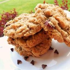 Cranberry Walnut Oatmeal Cookies Allrecipes.com