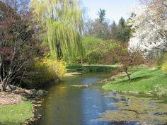Dow Gardens, Midland MI