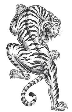 Shaded asian tiger vector image on VectorStock Japanese Tiger Tattoo, Japanese Tattoo Designs, Japanese Tattoos, Chinese Tattoos, Hawaiian Tribal Tattoos, Samoan Tribal, Filipino Tribal, Thai Tattoo, Maori Tattoos