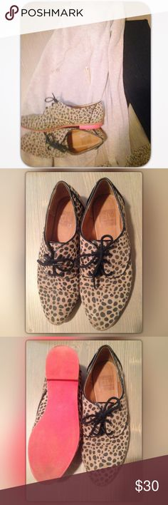 dv Dolce Vita Suede Oxfords with Red Soles! Spotted Suede Oxfords with adorable red soles. Size 6.5. Minor wear. Perfect with a black mini for summer  or with leggings and a sweater for fall!  DV by Dolce Vita Shoes Flats & Loafers