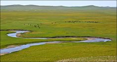 Mongolia being exposed to desertification