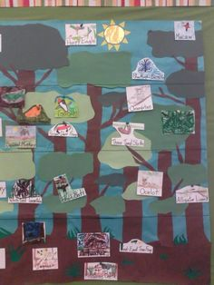 Layers of the rainforest activity - after learning about the animals in the rainforest, students can place them in the correct layer Rainforest Classroom, Rainforest Activities, Rainforest Habitat, Rainforest Animals, Amazon Rainforest, Student Teaching, Teaching Science, Teaching Reading, First Grade Science