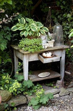 Life With Your Own Flower Garden - Beautiful, Easy For my own Pleasure. Hosta l brocante l tafeltje l tuin ideeën l garden ideas l gartenFor my own Pleasure. Hosta l brocante l tafeltje l tuin ideeën l garden ideas l garten
