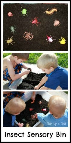 Insect Sensory Bin - A fun way for kids to learn through play and exploration.  Add non insects to the bin to help children learn the differences between spiders, insects, centipedes and other small creatures.  The base for this bin is a fun and FREE sensory material that looks and feels like dirt, but it smells amazing!