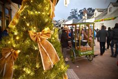 Gastrology - A Melbourne Food, Lifestyle and Travel Blog: Christmas in July @ Sovereign Hill [27 June - 12 July]