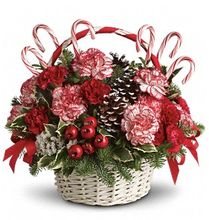 Candy Cane Christmas, Allen's Flower Market Reseda Christmas Gifts, Christmas Flowers, Holiday Flowers & Gifts.  http://www.allensflowermarketonline.com/candy-cane-christmas/