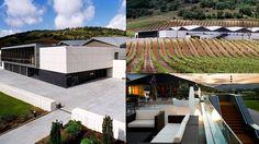 Online buy wine at best prices Online Wine Store, Spanish Wine, Wines, Outdoor Decor, Design, Home Decor, Wine Cellars, Architecture, Mockup