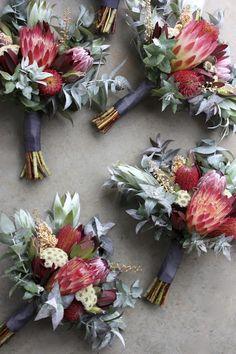 Swallows Nest Farm – Bouquet Of Sunflowers Protea Wedding, Blush Wedding Flowers, Flower Bouquet Wedding, Floral Wedding, Colorful Flowers, Beautiful Flowers, Flowers Pics, Fall Flowers, Fresh Flowers