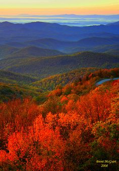 I took this picture right as the sun rose on the Blue Ridge Parkway in NC in Oct. This was truly a spectacular sight. I took this picture right as the sun rose on the Blue Ridge Parkway in NC in Oct. This was truly a spectacular sight. Blue Ridge Parkway, Blue Ridge Mountains, Great Smoky Mountains, Colorful Mountains, Mountain Photography, Landscape Photography, Nature Photography, Fall Pictures, Nature Pictures
