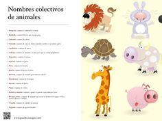 Sustantivos colectivos de animales.