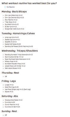Michelle Levin's workout routine