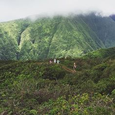 Aloha Friday adventuring at Waihee Ridge with 📷: Aloha Friday, Hawaii Life, More Pictures, How Are You Feeling, Country Roads, Adventure, Mountains, Lifestyle, Places