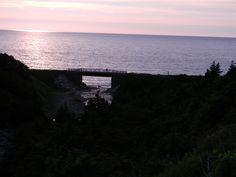 MacDougal's Gulch part of the Newfoundland T'Railway  http://gator756.hostgator.com/~trailway/index.php
