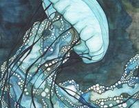 Jellyfish by Tamara Phillips, via Behance