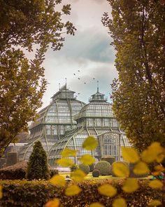Wszystkie posty • Instagram Danube River, Imperial Palace, Vienna, Austria, Taj Mahal, Country, City, Building, Summer