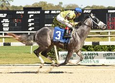 Twin Creeks Racing Stables' Destin (Giant's Causeway) put his name on the list of early GI Kentucky Derby contenders with his 2 1/4-length victory in Saturday's GII Sam F. Davis S. at Tampa Bay …