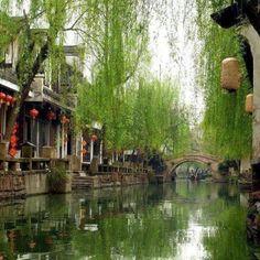 Spring in Shanghai, China