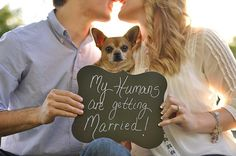 My Humans are getting Married! #wedding #engagementphotos #photography