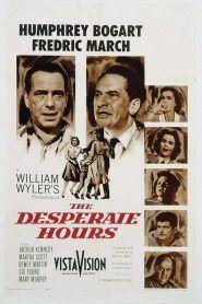 Tendencias Pagina 142 Zoowoman 1 0 William Wyler Humphrey Bogart Gig Young