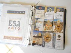 Girl Simply Living: Organizing Scout awards