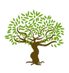 Reunionfamily Tree On Pinterest Family Trees
