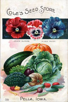 The Story of the Millennium Seed Bank Project + Gorgeous Vintage Seed Catalog Cover Artwork | Brain Pickings
