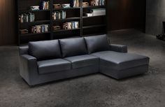 J&M Furniture | J&M Futon | Modern Furniture Wholesale | New York NY | New Jersey NJ :: New Arrivals :: Elizabeth Premium Sectional Sleeper