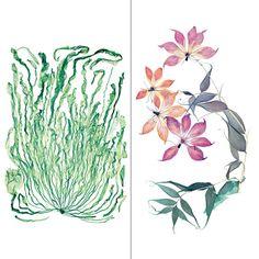 Nick Knight In Bloom