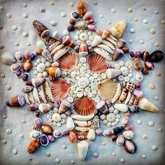 "134 Likes, 14 Comments - Stephanie Martineau (@islehopdesigns) on Instagram: ""87/#100mandalas Morning stars for breakfast . Yumyum. #mandala made by me. #seashells made…"""