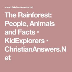 The Rainforest: People, Animals and Facts • KidExplorers • ChristianAnswers.Net