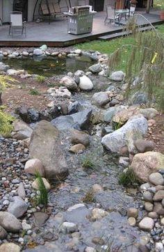 steingarten gestalten-flusssteine bachlauf immergrüne pflanzen ...