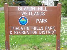 Beacon Hill Wetlands Park - Beaverton, OR - Kid friendly activity r... - Trekaroo